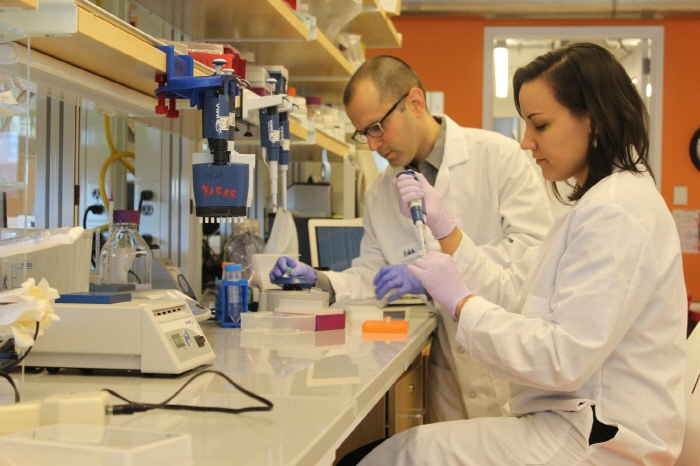 ▲ 엘리치(Yaniv Erlich)와 지에린스키(Dina Zielinski) 두 연구원들이 DNA분자의 저장 능력을 극대화하는 새로운 코딩 기술을 설명하고 있다. Credit: New York Genome Center.